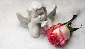 キレイなバラと天使の写真