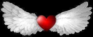 白い羽根とハートのイラスト