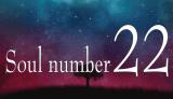 ソウルナンバー【22】の使命・運勢・特徴・性格・適職・恋愛・結婚・相性を解説